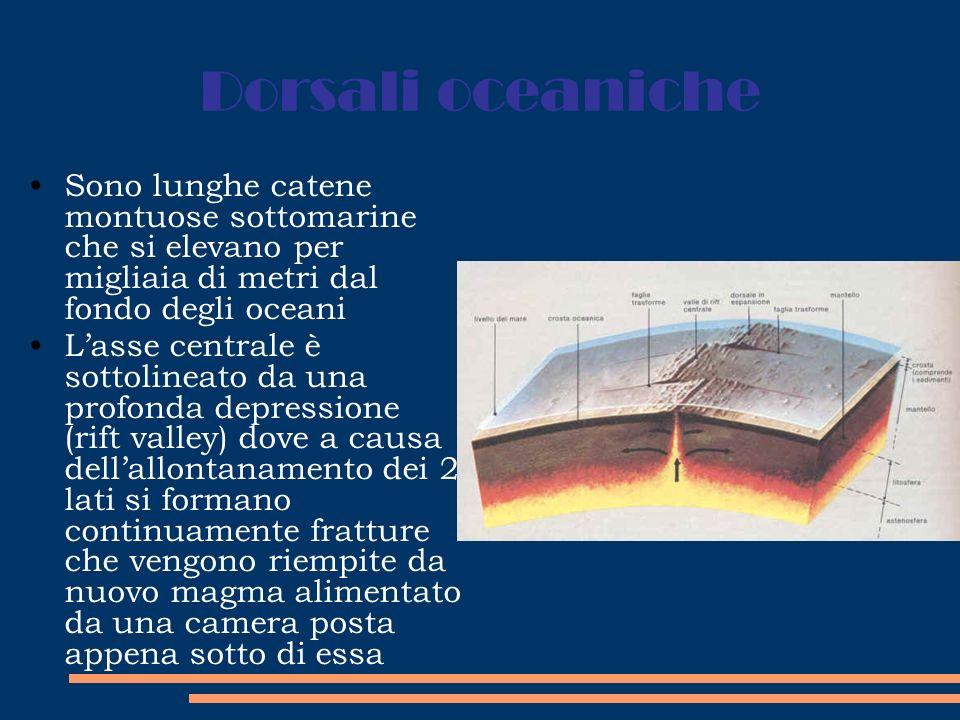 Dorsali oceaniche Sono lunghe catene montuose sottomarine che si elevano per migliaia di metri dal fondo degli oceani.