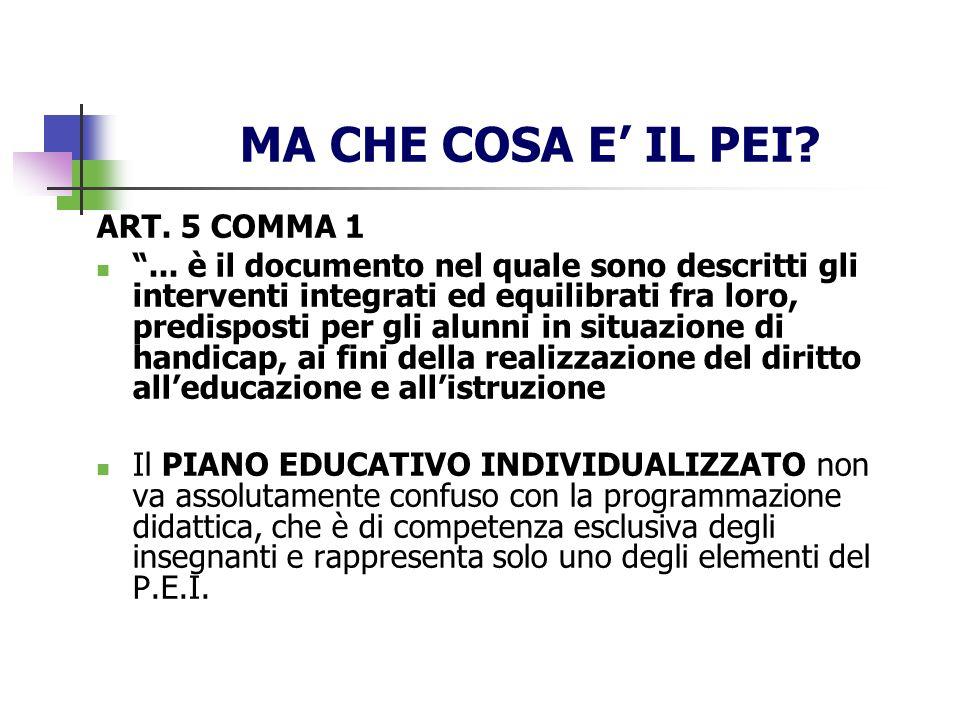 MA CHE COSA E' IL PEI ART. 5 COMMA 1