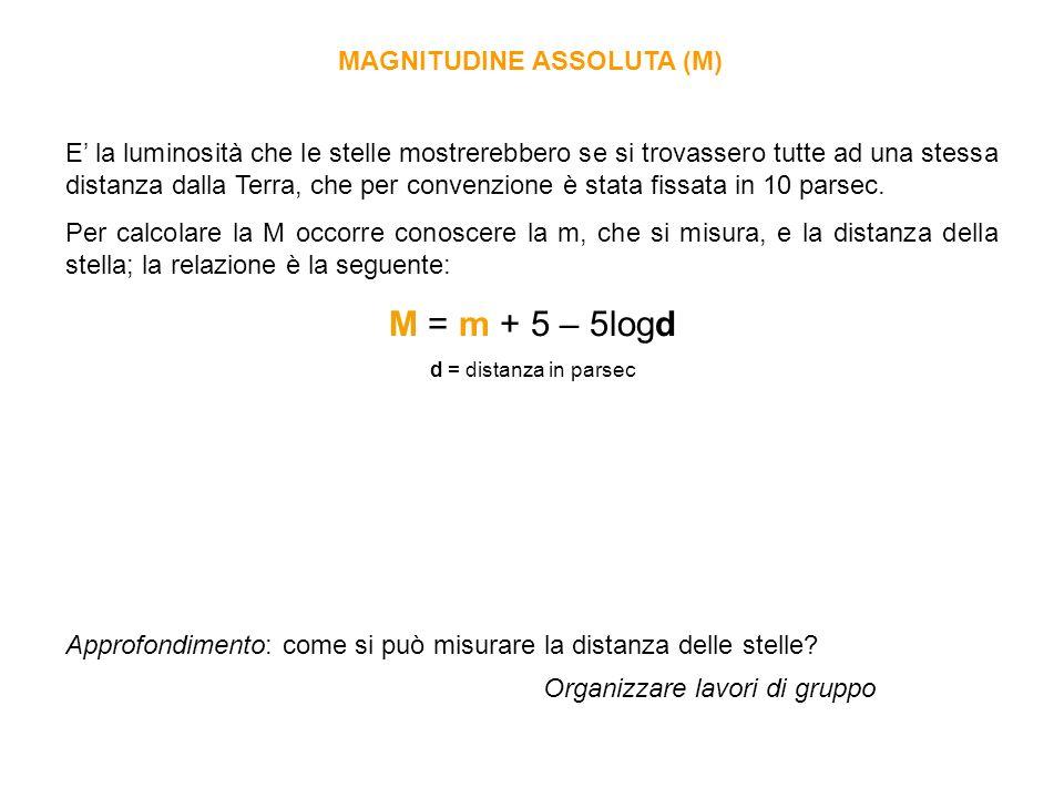 M = m + 5 – 5logd MAGNITUDINE ASSOLUTA (M)