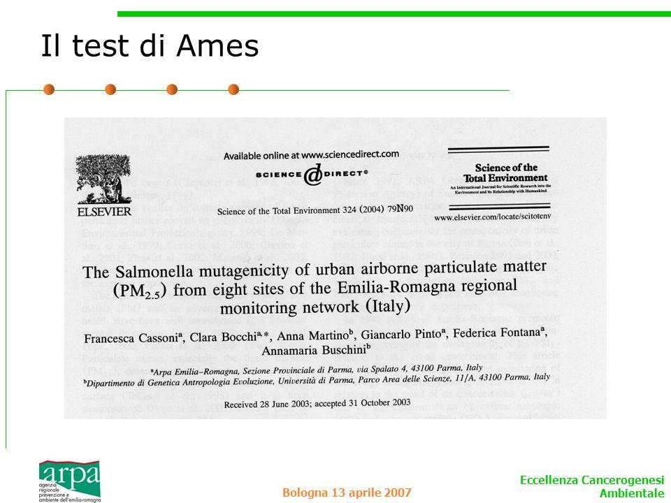 Il test di Ames Bologna 13 aprile 2007