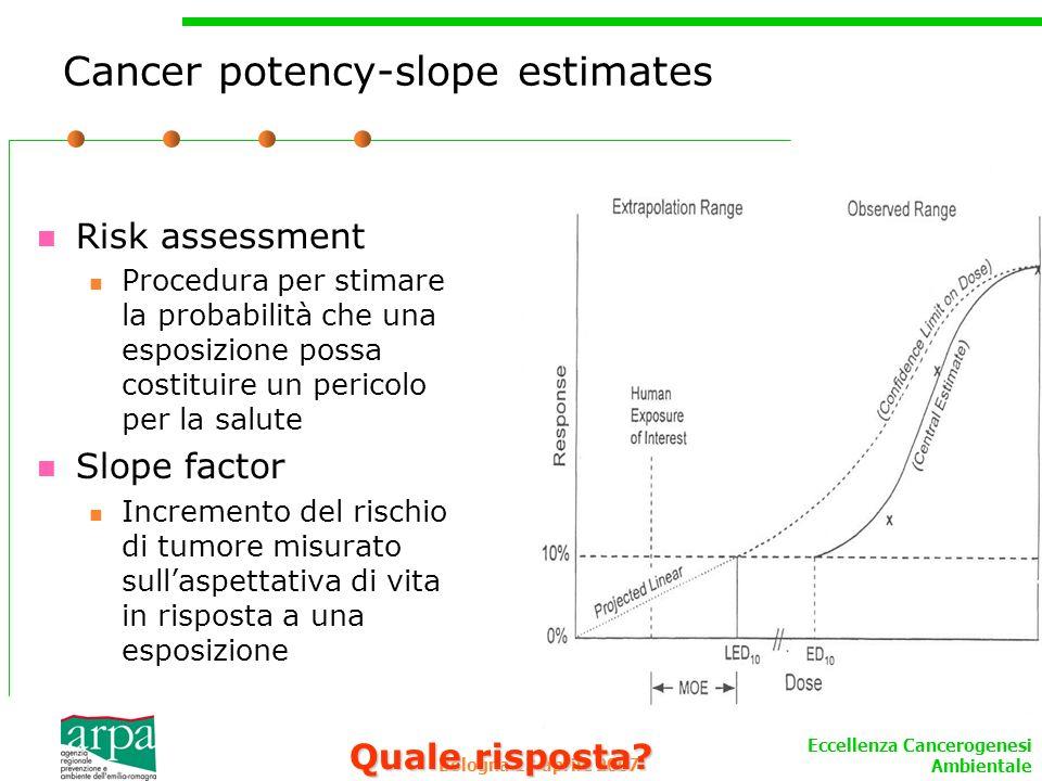 Cancer potency-slope estimates