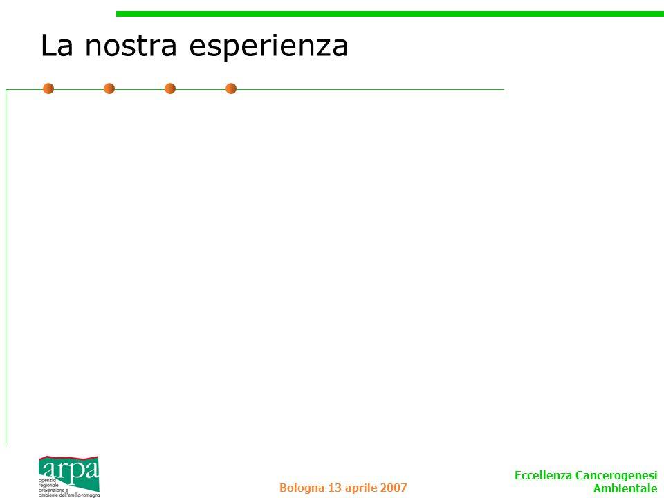 La nostra esperienza Bologna 13 aprile 2007