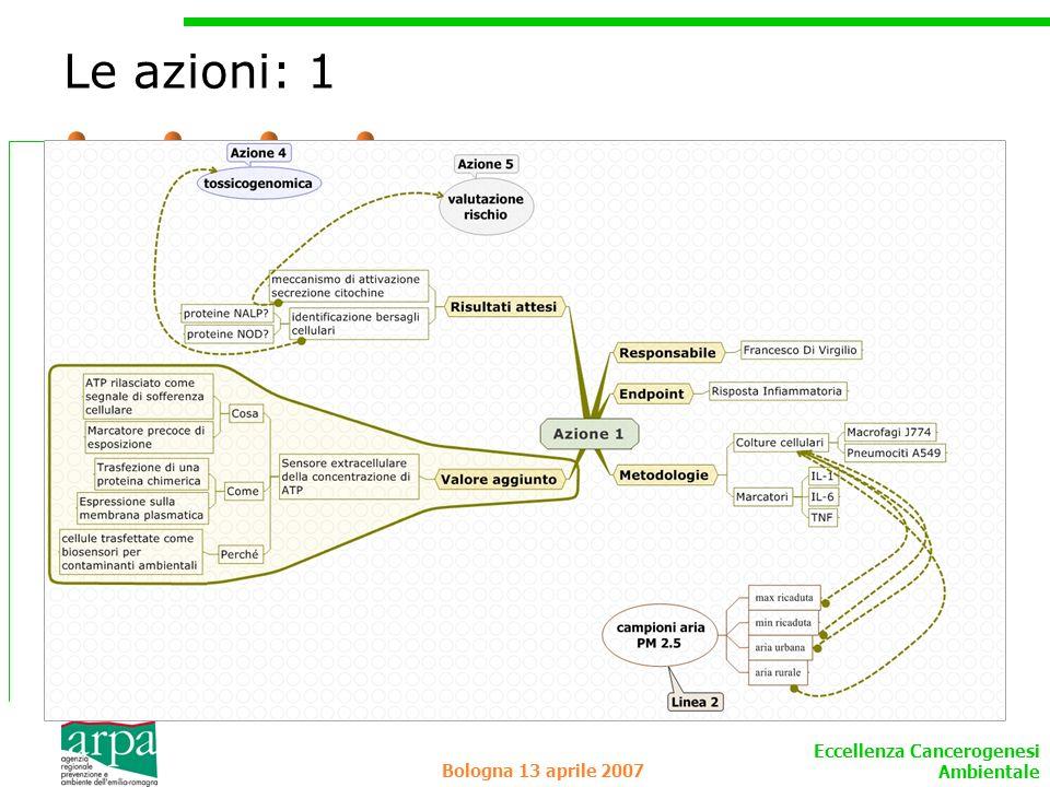 Le azioni: 1 Bologna 13 aprile 2007