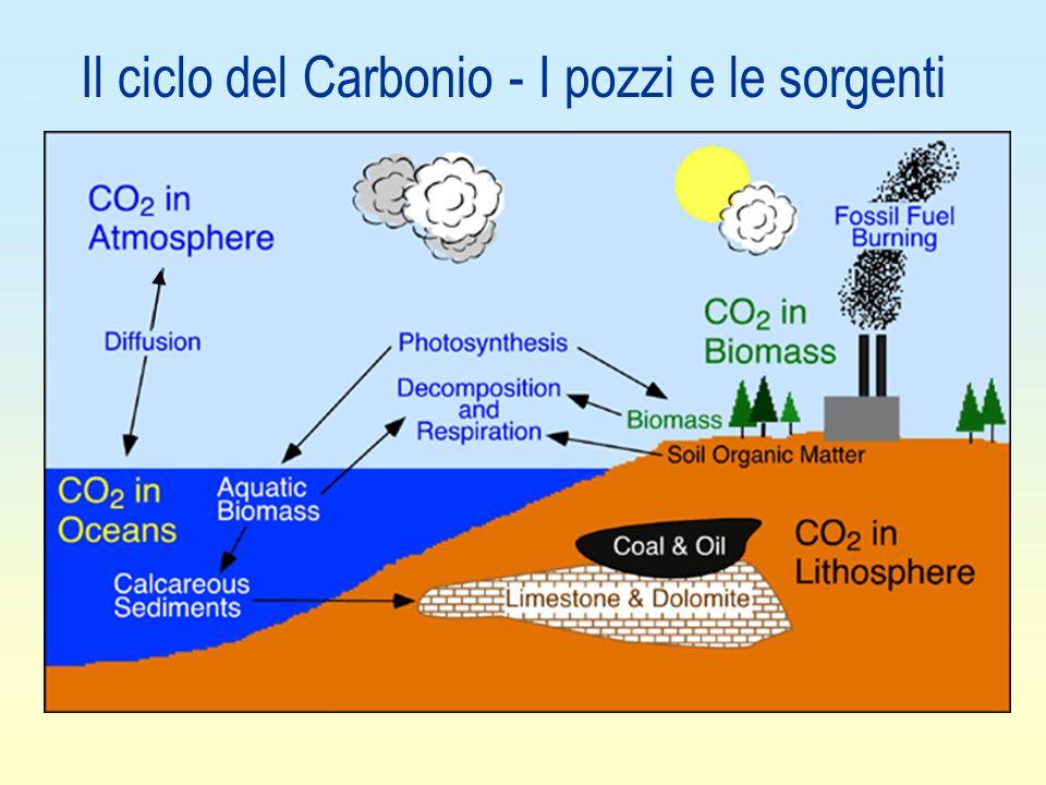 Il ciclo del Carbonio - I pozzi e le sorgenti