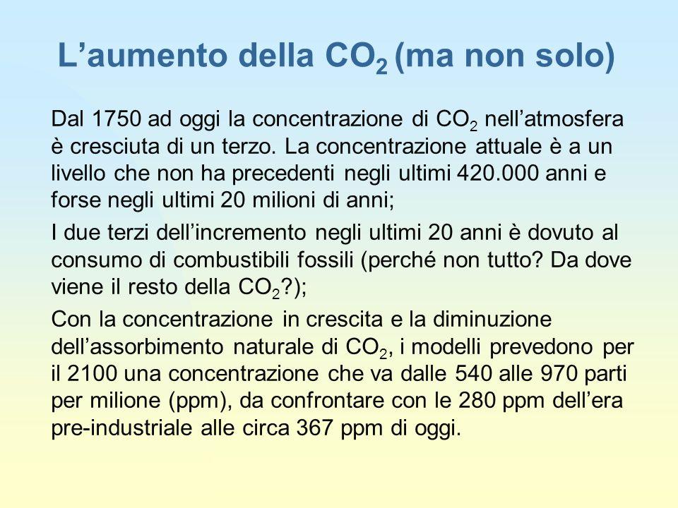 L'aumento della CO2 (ma non solo)