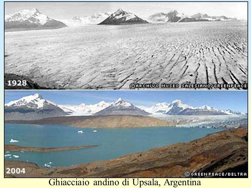 Ghiacciaio andino di Upsala, Argentina