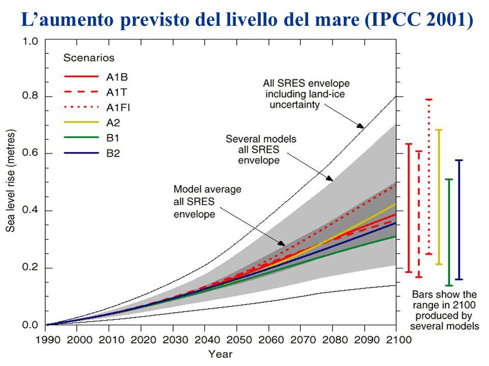 L'aumento previsto del livello del mare (IPCC 2001)
