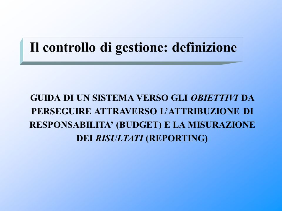 Il controllo di gestione: definizione