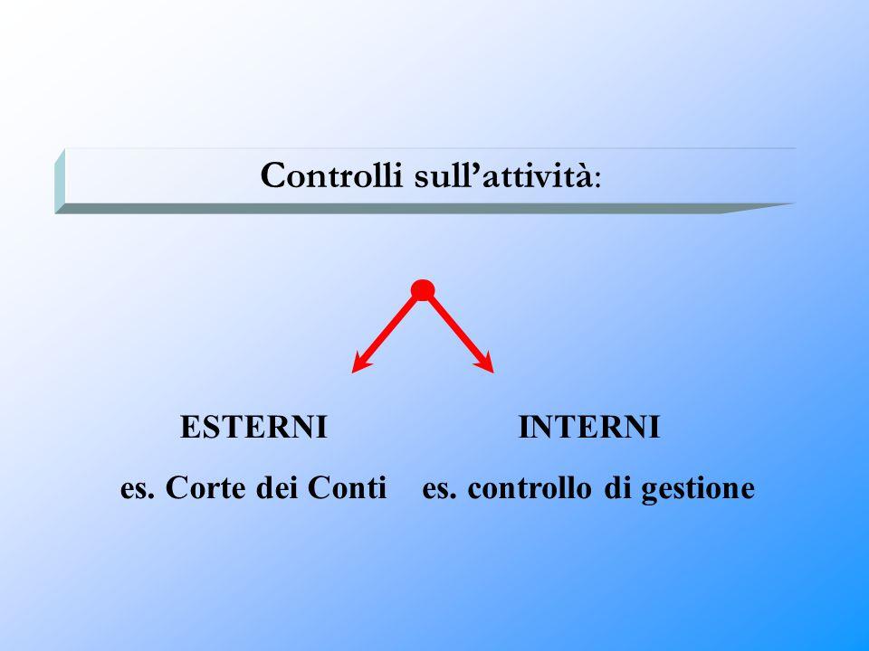 es. controllo di gestione