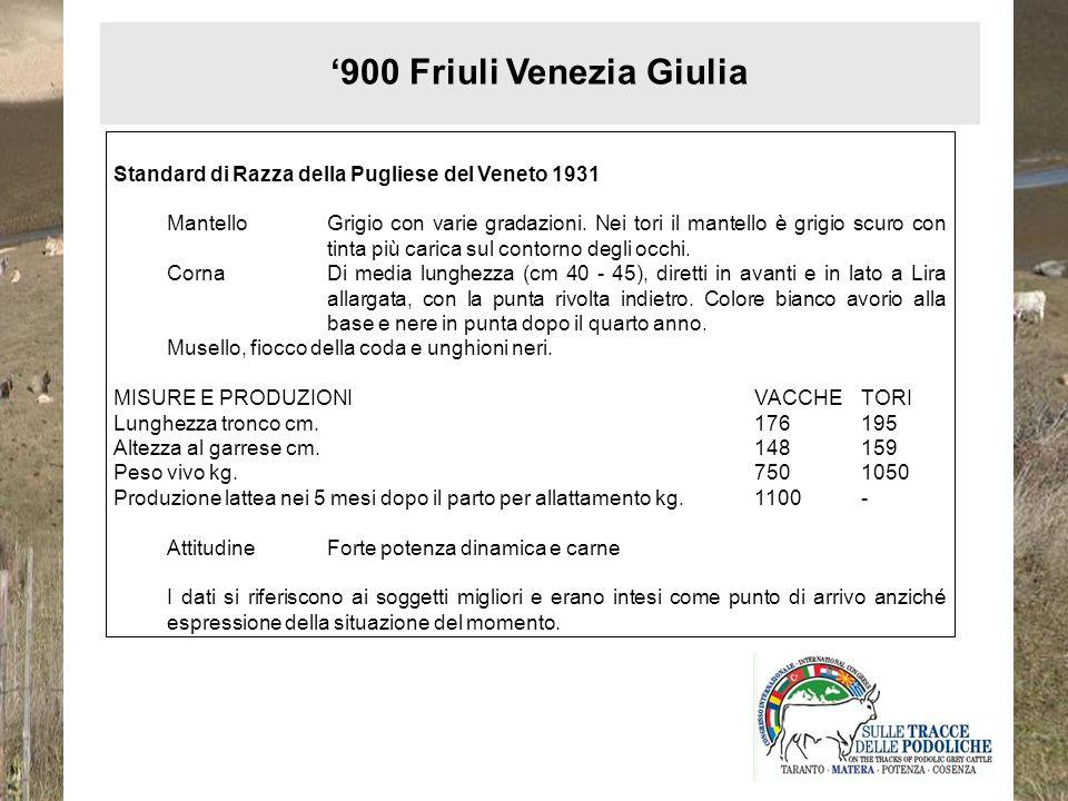 '900 Friuli Venezia Giulia