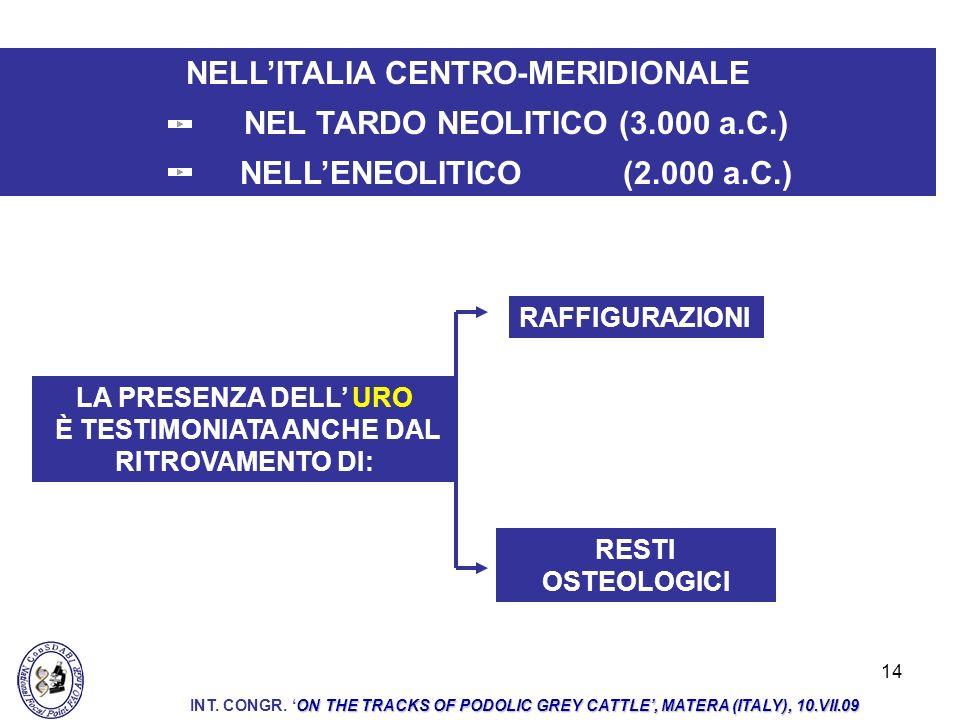 NELL'ITALIA CENTRO-MERIDIONALE NEL TARDO NEOLITICO (3.000 a.C.)