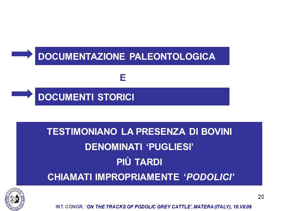 DOCUMENTAZIONE PALEONTOLOGICA