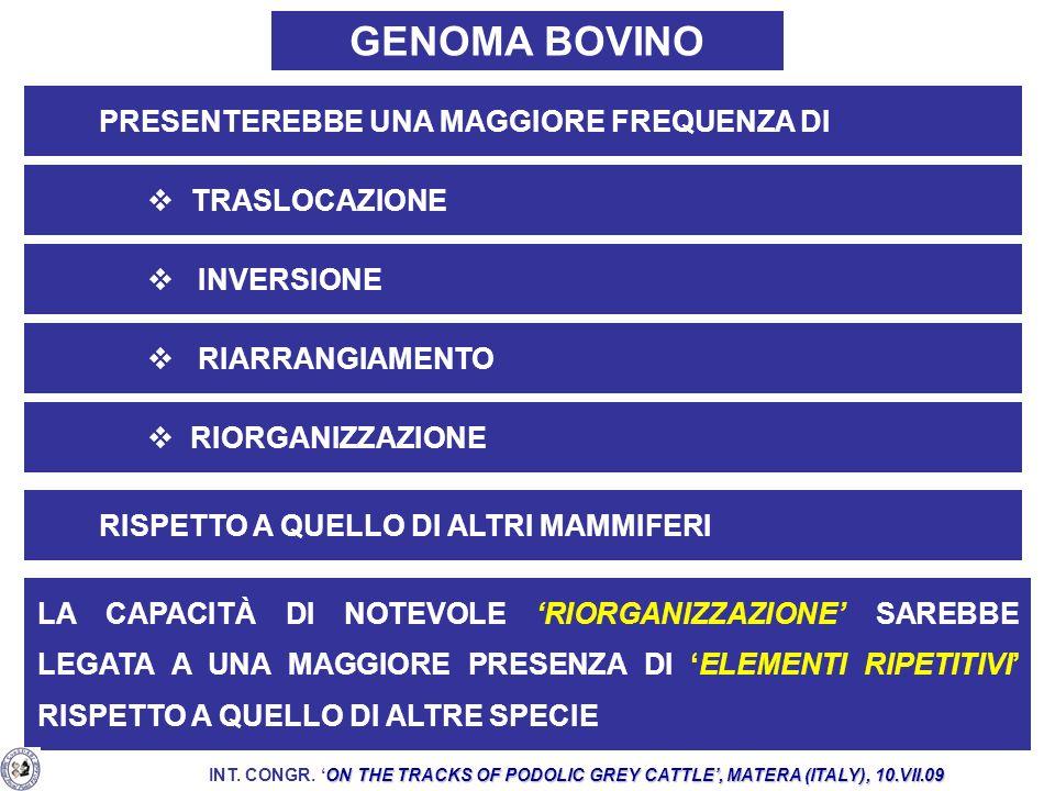 GENOMA BOVINO ed. PRESENTEREBBE UNA MAGGIORE FREQUENZA DI