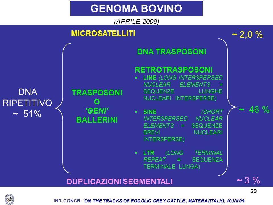 GENOMA BOVINO ~ 2,0 % DNA RIPETITIVO ~ 51% ~ 46 % ~ 3 % MICROSATELLITI