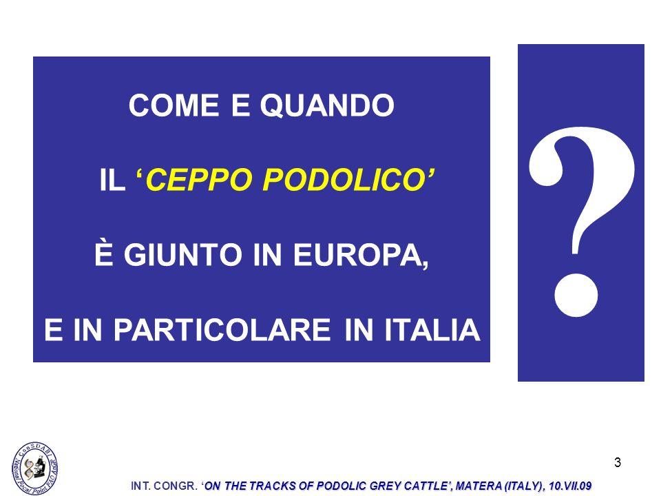 E IN PARTICOLARE IN ITALIA