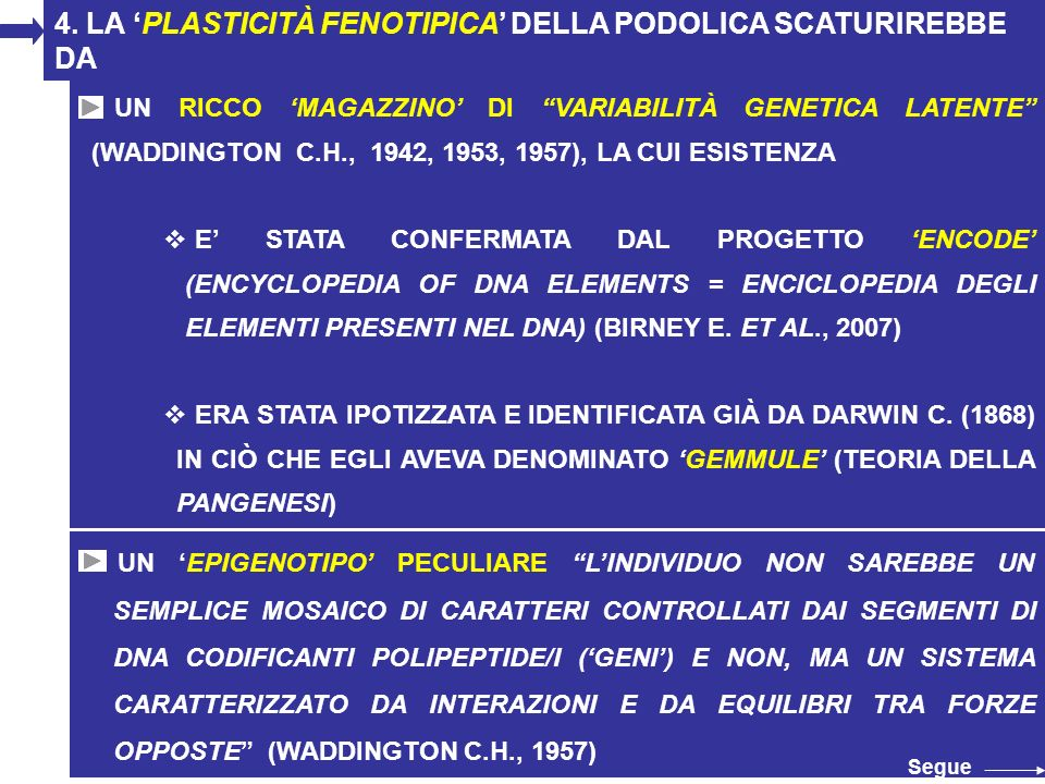 4. LA 'PLASTICITÀ FENOTIPICA' DELLA PODOLICA SCATURIREBBE DA