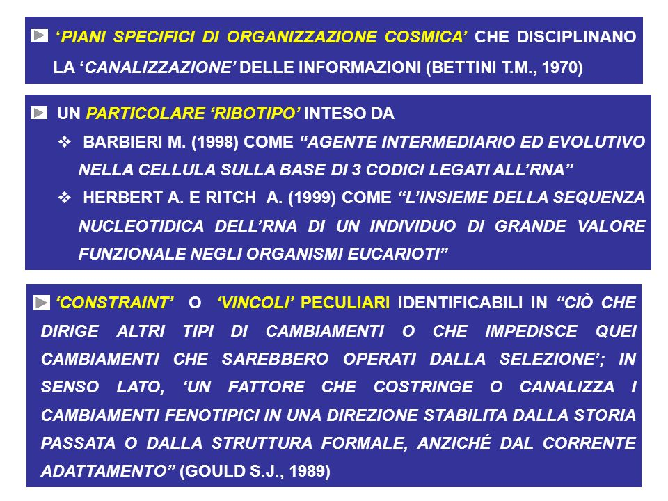 'PIANI SPECIFICI DI ORGANIZZAZIONE COSMICA' CHE DISCIPLINANO LA 'CANALIZZAZIONE' DELLE INFORMAZIONI (BETTINI T.M., 1970)