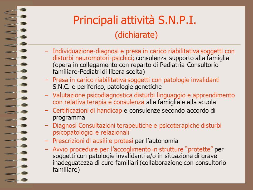 Principali attività S.N.P.I. (dichiarate)
