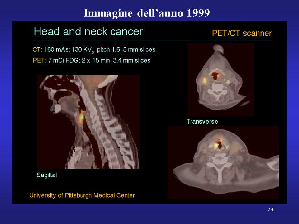 Immagine dell'anno 1999