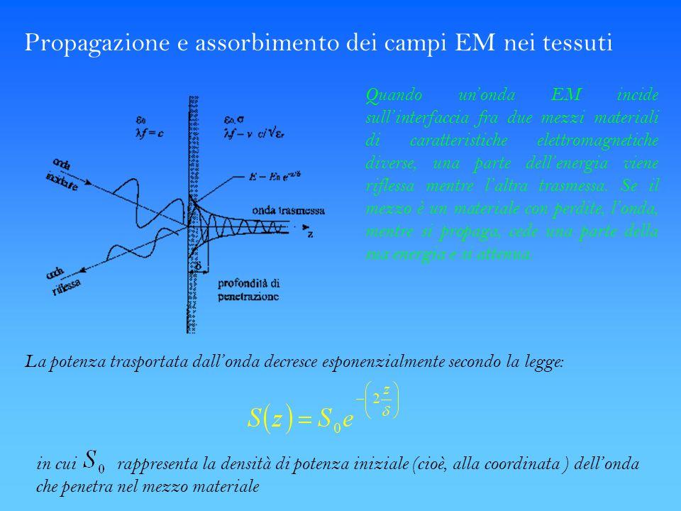Propagazione e assorbimento dei campi EM nei tessuti