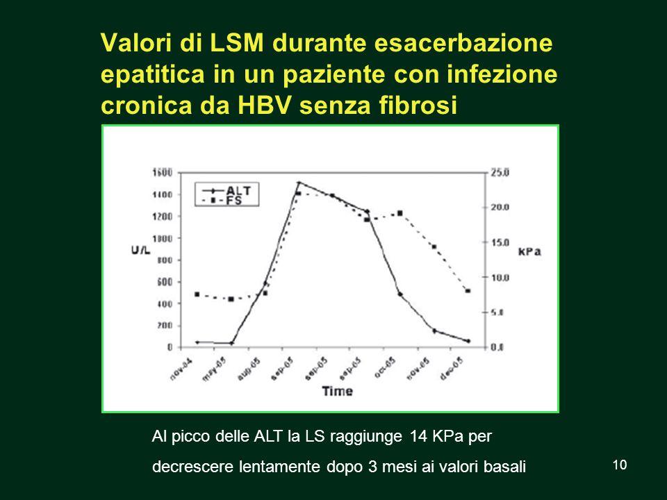 Valori di LSM durante esacerbazione epatitica in un paziente con infezione cronica da HBV senza fibrosi