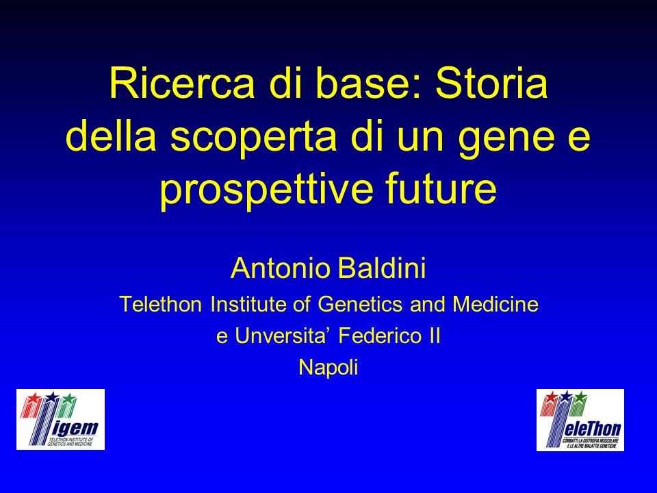 Ricerca di base: Storia della scoperta di un gene e prospettive future
