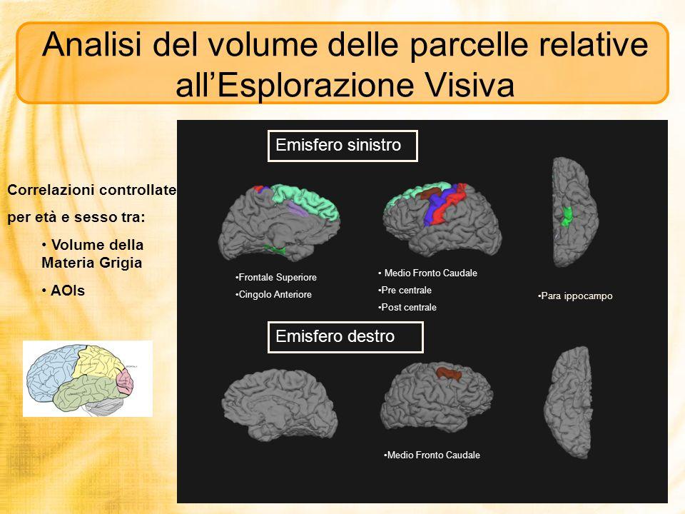 Analisi del volume delle parcelle relative all'Esplorazione Visiva