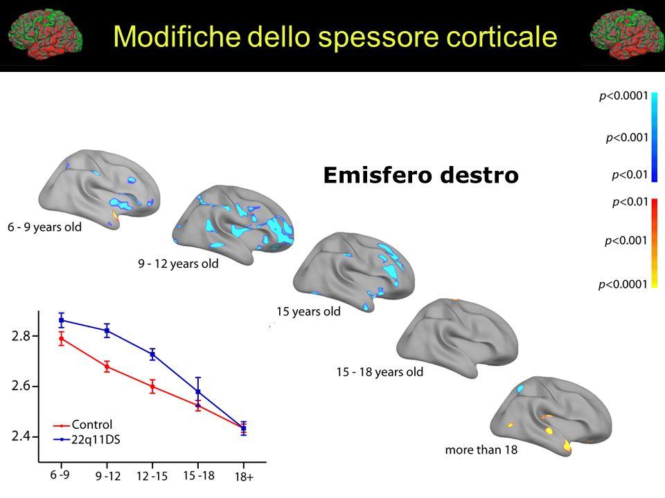 Modifiche dello spessore corticale