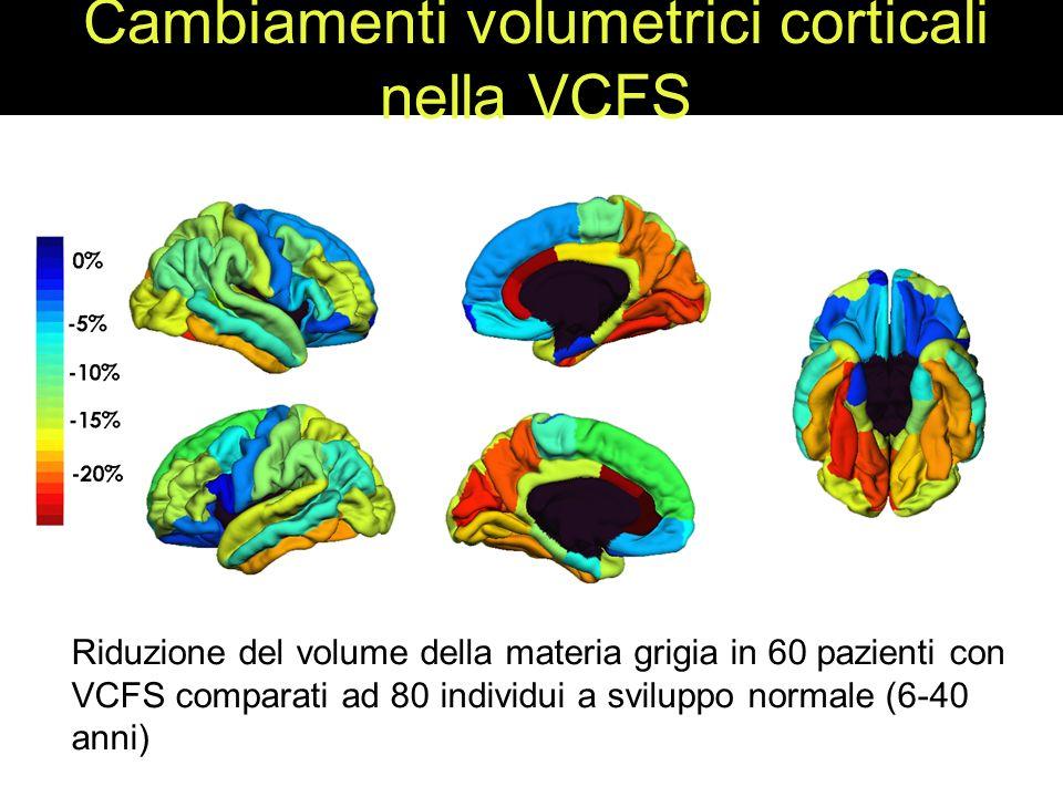 Cambiamenti volumetrici corticali nella VCFS