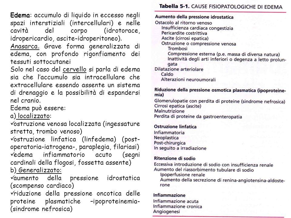 Edema: accumulo di liquido in eccesso negli spazi interstiziali (intercellulari) e nelle cavità del corpo (idrotorace, idropericardio, ascite-idroperitoneo).