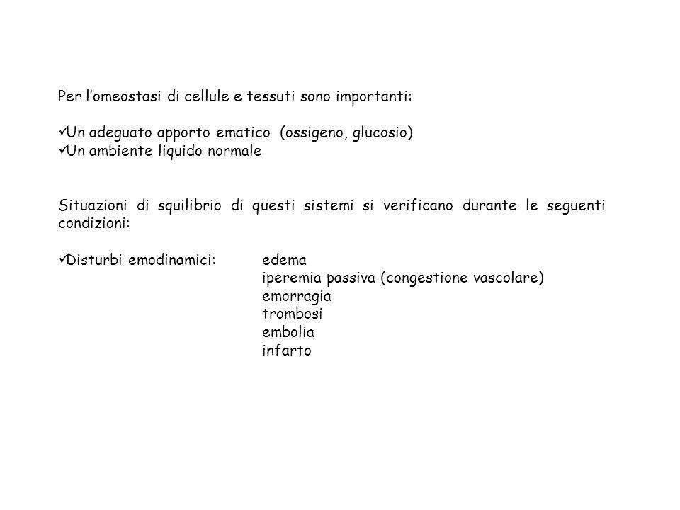 Per l'omeostasi di cellule e tessuti sono importanti: