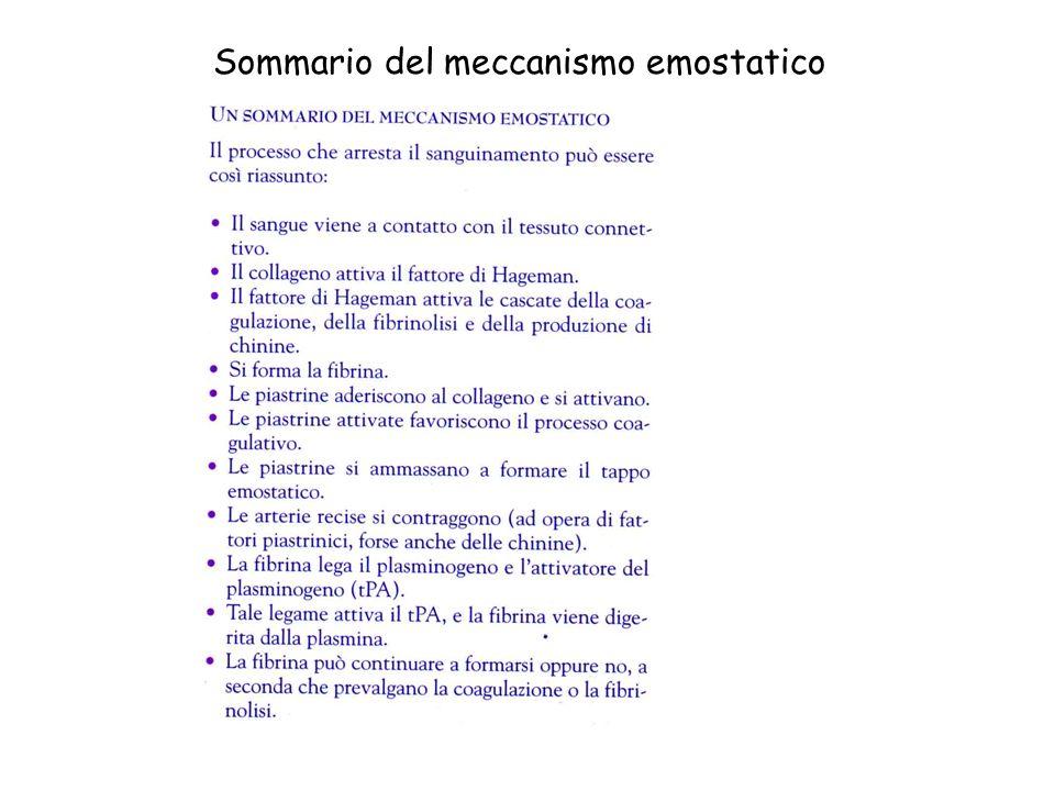 Sommario del meccanismo emostatico