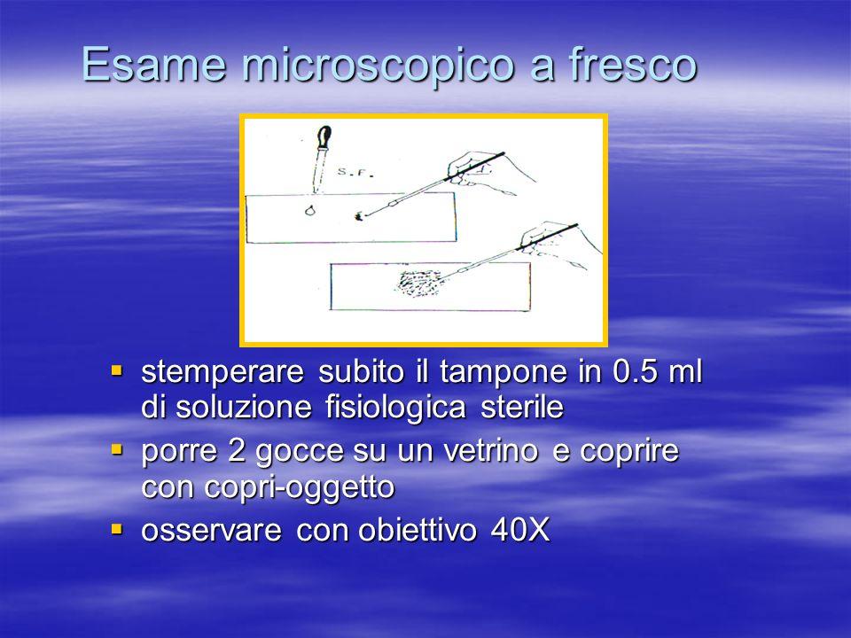 Esame microscopico a fresco