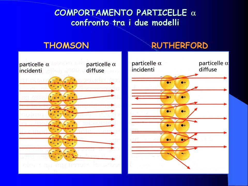 COMPORTAMENTO PARTICELLE  confronto tra i due modelli