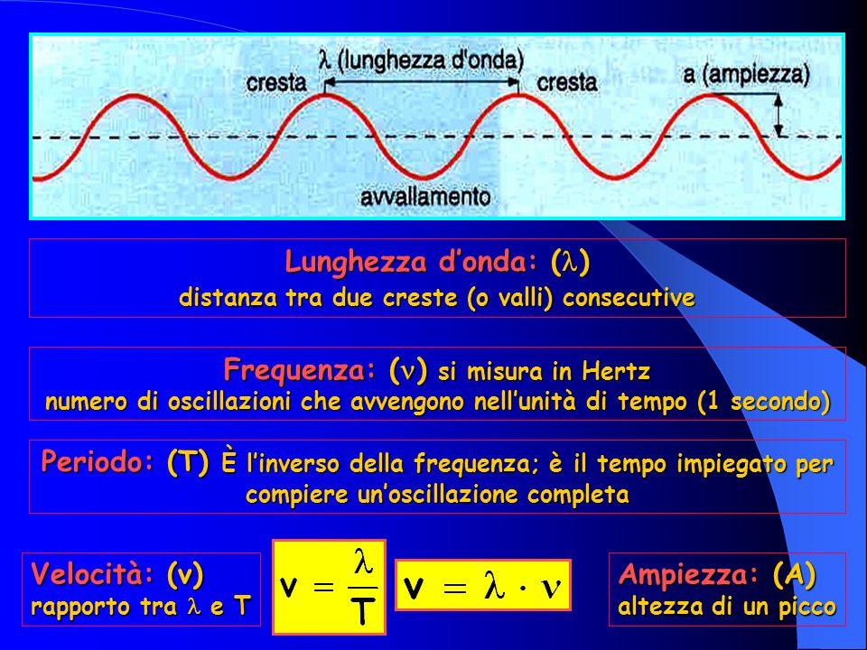 Frequenza: () si misura in Hertz