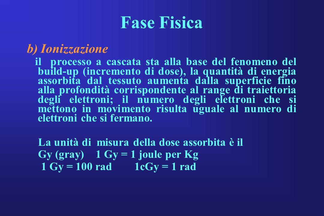 Fase Fisica b) Ionizzazione