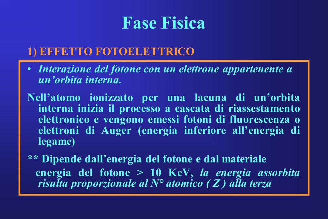 Fase Fisica 1) EFFETTO FOTOELETTRICO