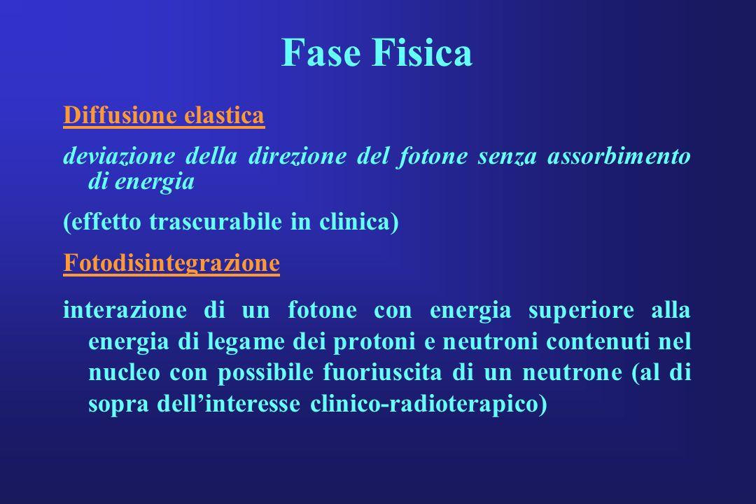 Fase Fisica Diffusione elastica