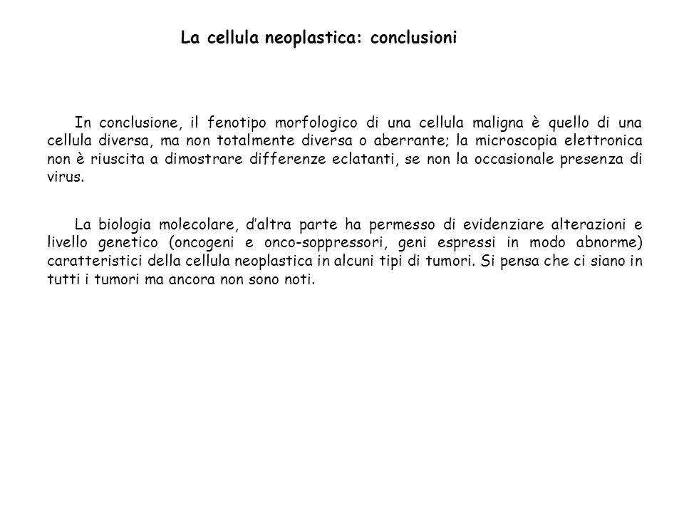 La cellula neoplastica: conclusioni