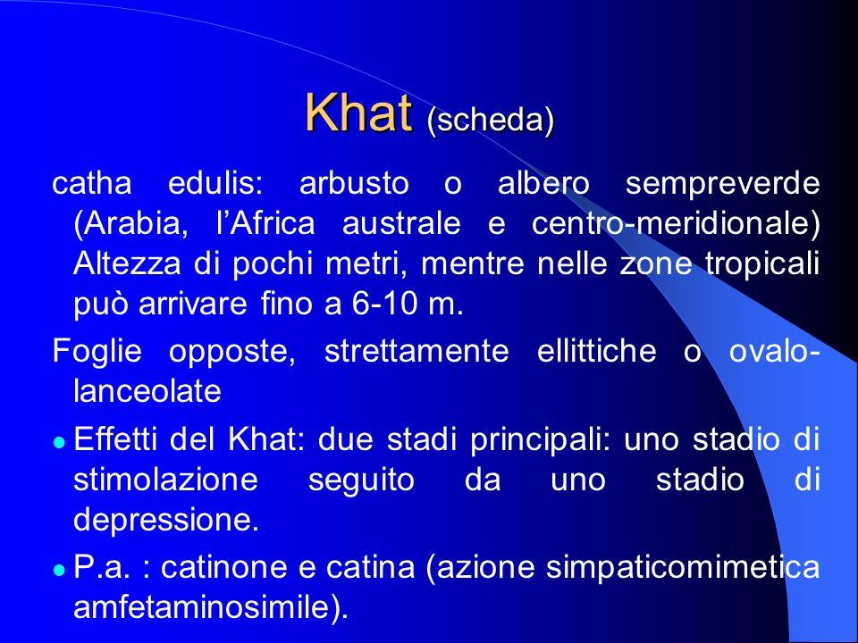 Khat (scheda)