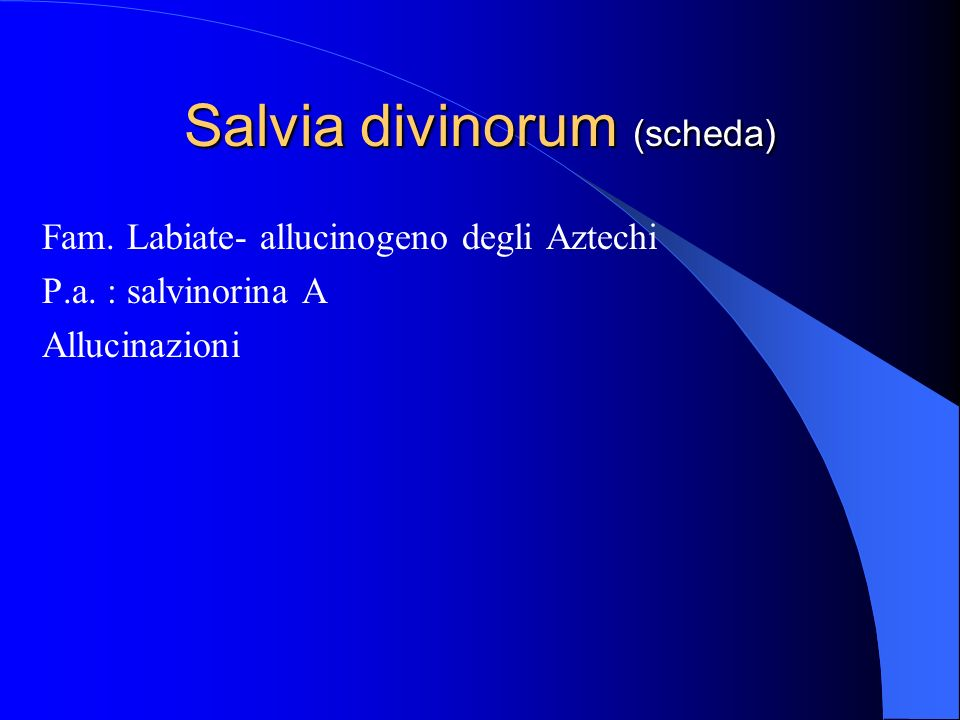 Salvia divinorum (scheda)