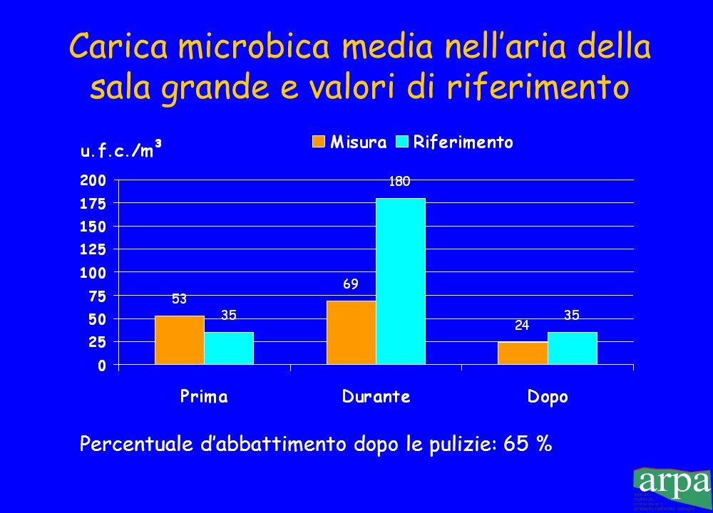 Percentuale d'abbattimento dopo le pulizie: 65 %