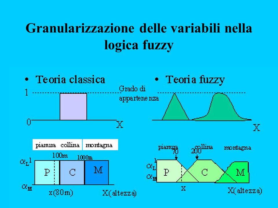 Granularizzazione delle variabili nella logica fuzzy