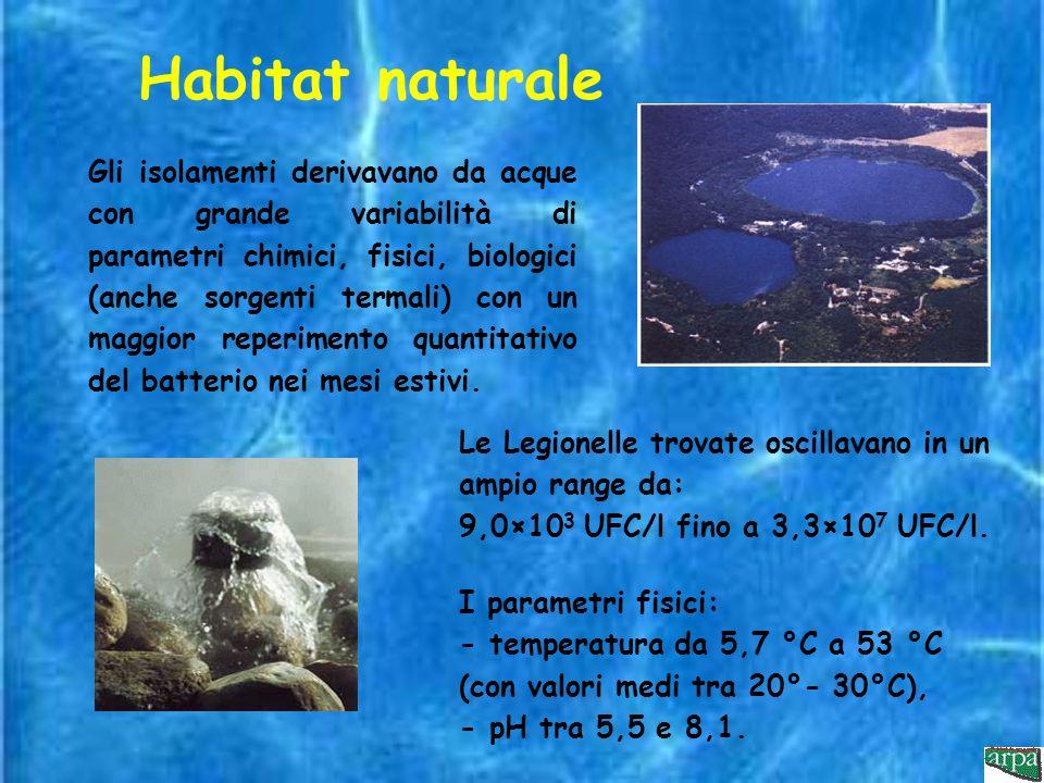 Habitat naturale