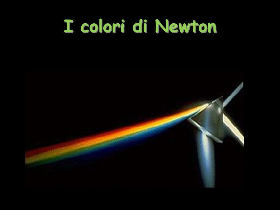 I colori di Newton Tiziana Segalini 2009