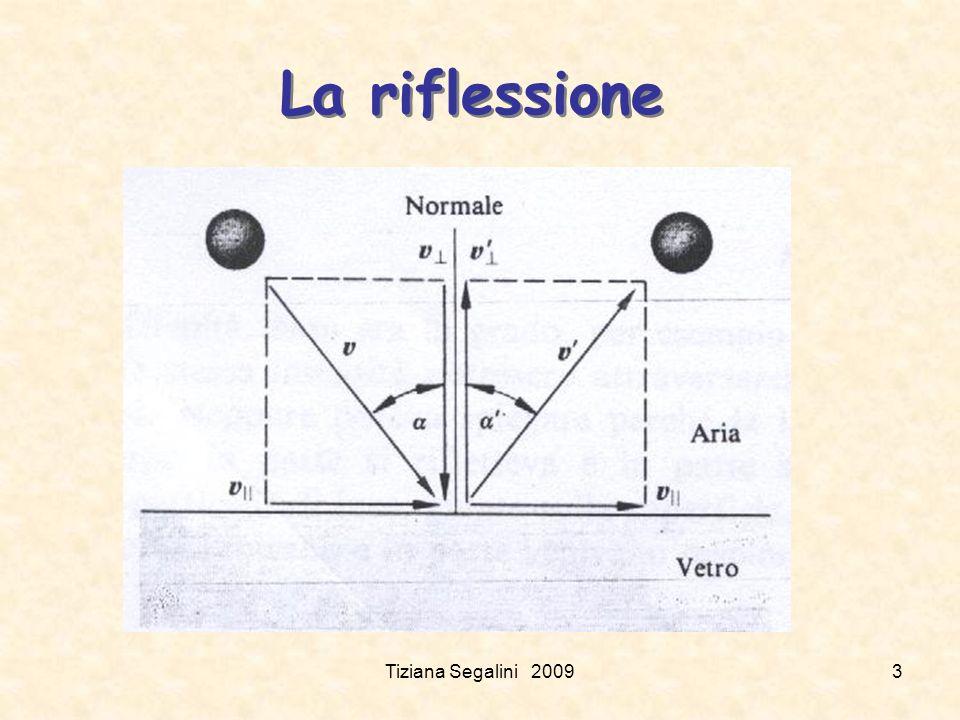 La riflessione Tiziana Segalini 2009