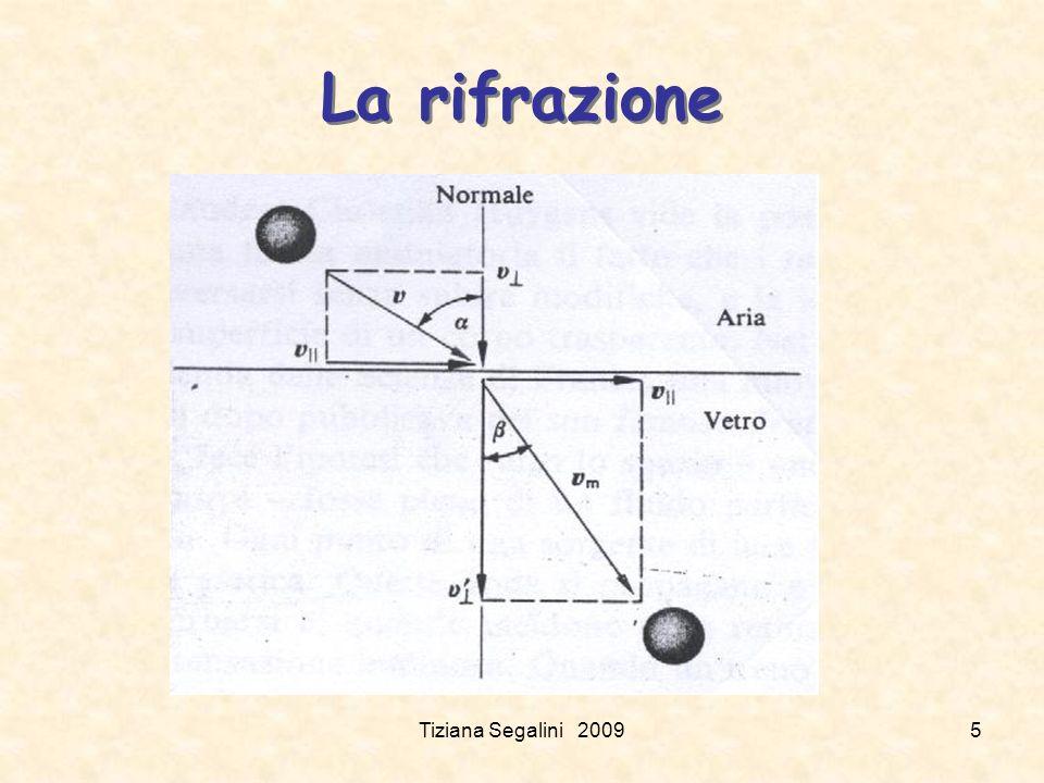 La rifrazione Tiziana Segalini 2009