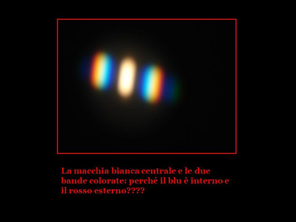 La macchia bianca centrale e le due bande colorate: perché il blu è interno e il rosso esterno