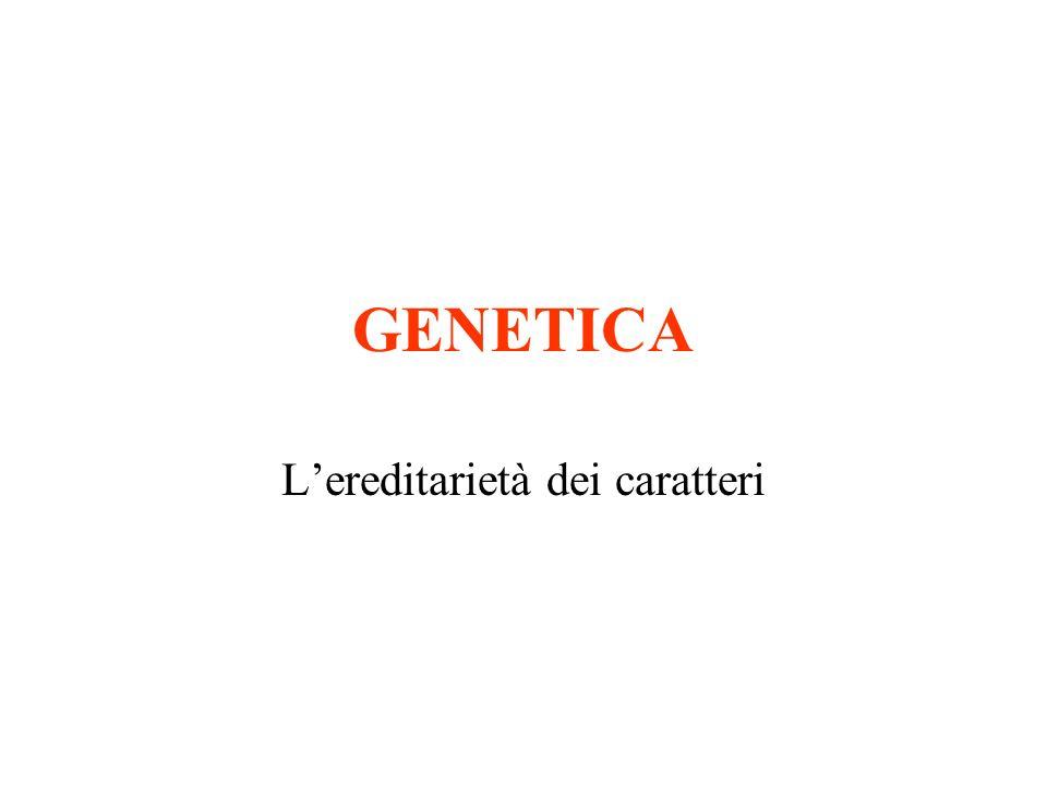 L'ereditarietà dei caratteri