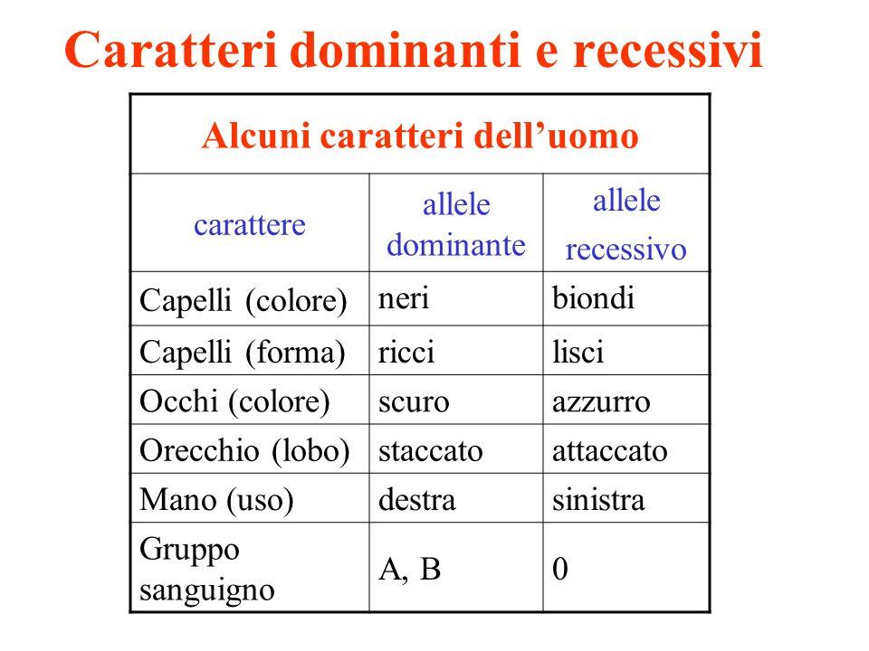 Caratteri dominanti e recessivi